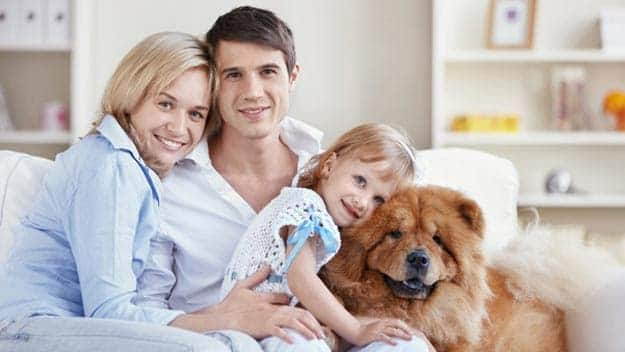 Wills & Trusts dog-young-family Direct Wills Kent
